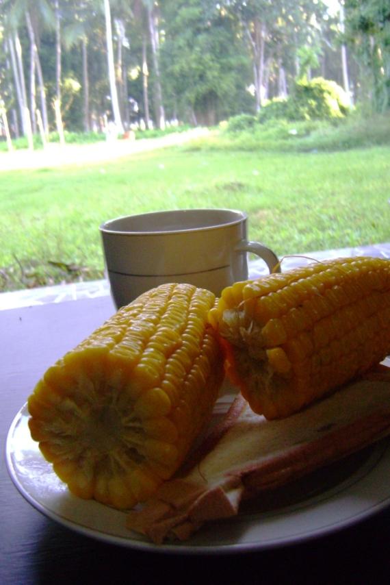Breakfast hotel : jagung, roti bakas, teh manis hangat